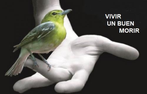 Conferencia gratuita: VIVIR UN BUEN MORIR